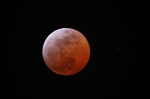 EclipseLuna03032007planetari_14cmhorizontal100ppp