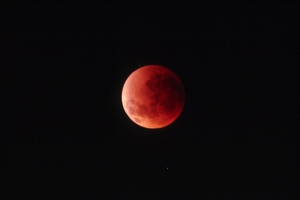 eclipseluna170889_14cmhorizontal100ppp
